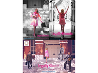 Legally Blonde Posters