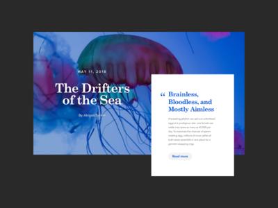 Jellyfish Card Details