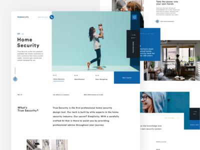 True Security Homepage