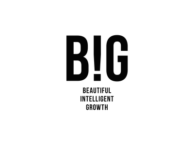 BIG brand identity white marketing logotype logo designer new york firm company branding agency brand black minimal logo