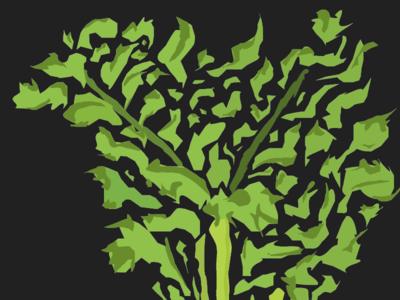 Karotte veggie illustrator illustration