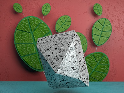 Leaves creation content cgi texture arnold cinema4d 3d