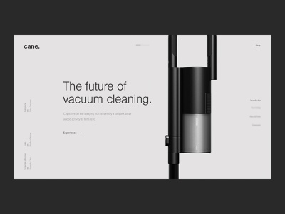 Cane—Exploration greyscale clean 3d model innovation high-tech vacuum cleaner home appliances product design industrial technology minimal interface webdesign ui website
