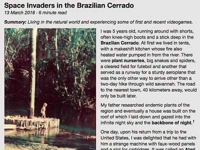 Space Invaders in the Brazilian Cerrado cerrado brazil web design photography helvetica typesetting videogames invaders space