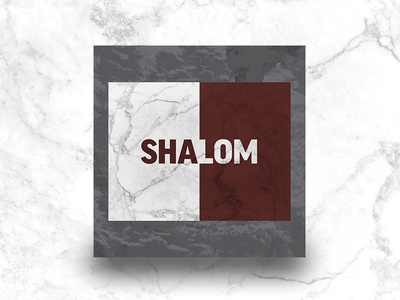 The Shalom Project