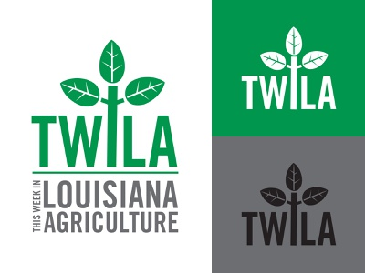 This Week in Louisiana Agriculture logo pms355 logo television farming farm bureau agriculture louisiana