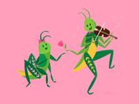 Grasshopper Song & Dance