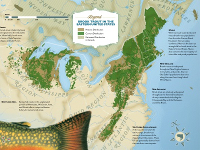 Brook Trout Distribution Map poster retro map