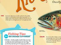 Poster Detail: Fishing Tips