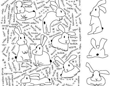 Rabbit Illustration Square