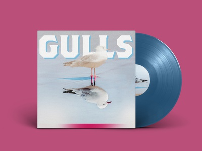 GULLS - Concept Album Art brothers seagull design album cover design album artwork album album art vinyl cover vinyl