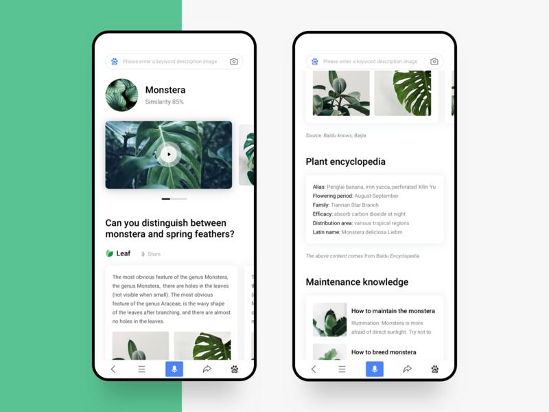 Plant encyclopedia surrounding typesetting skill search similarity photo monstera identification discriminate green plant design ui ux app