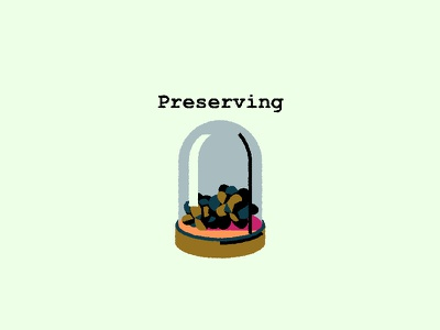A little adventure: Preseving