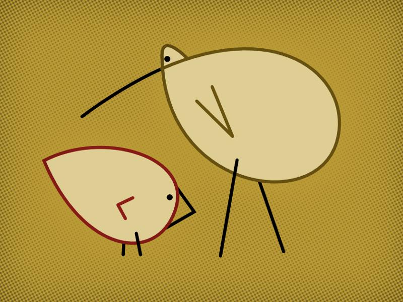 Bird Bros bird illustration