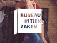 Logo Bureau Intieme Zaken