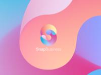SnapBusiness