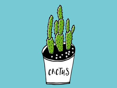 Cactus 01 nature green drawing illustration prickly pear opuntia indoor plant cactus