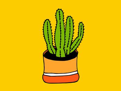 Cactus 04 nature green garden pop art illustration drawing decor succulent indoor plant cactus