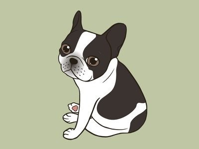 Say hello to the cute double hooded pied French Bulldog digital art illustration drawing animal canine pet puppy cute dog dog lover double hooded pied frenchie french bulldog frenchie