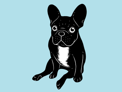 Cute brindle French Bulldog in black and white digital art digital art illustration drawing dog lover cute dog animal puppy pet dog brindle frenchie french bulldog frenchie