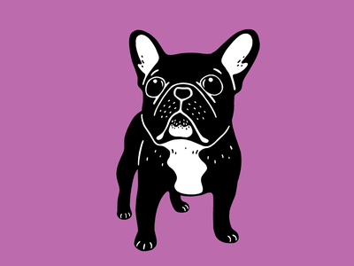 Super cute brindle French Bulldog Puppy illustration drawing pet dog lover cute dog frenchie puppy french bulldog brindle frenchie