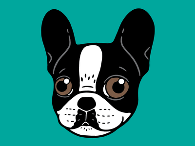 Double Hooded Pied French Bulldog Puppy illustration drawing cute dog frenchie lover cute frenchie puppy pet french bulldog pied frenchie double hooded