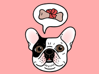 Time to treat the cute Frenchie