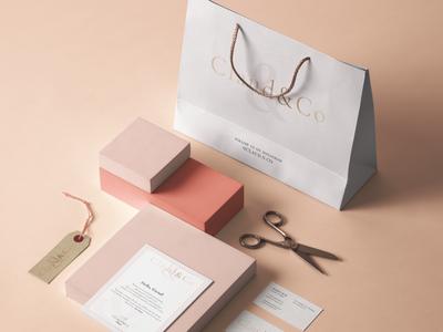Claud&Co   Branding