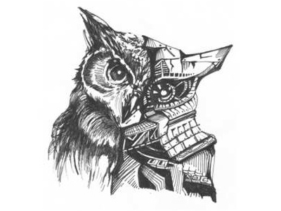 Owl sketch drawing design