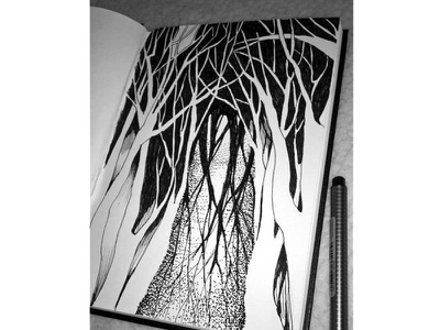 forest illustration concept drawing sketch