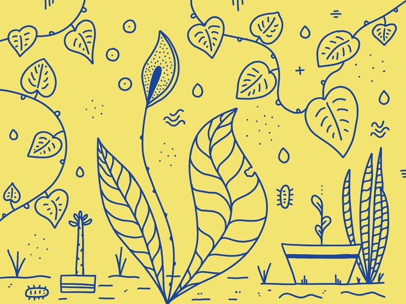 A day in the garden garden ipad app procreate yellow lineart plants illustration