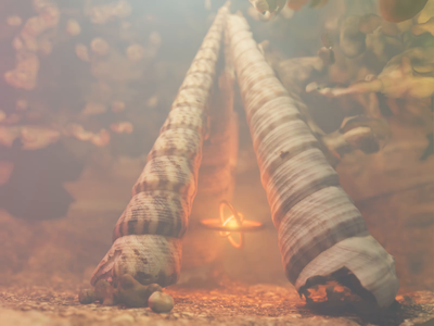 Magic Bonfire seashells 3dscanning photogrammetry loop render animation 3d blender