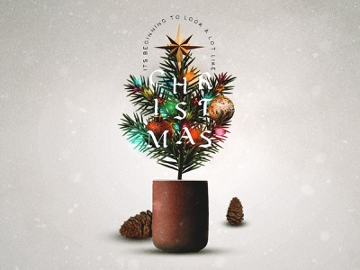 Its Beginning To Look A lot like Christmas christmas decorations christmas design christmas tree christmas colorful concept art social media design texture graphicdesign concept design typography photoshop adobe photoshop
