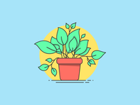 WIP - House Plants Illustration Series