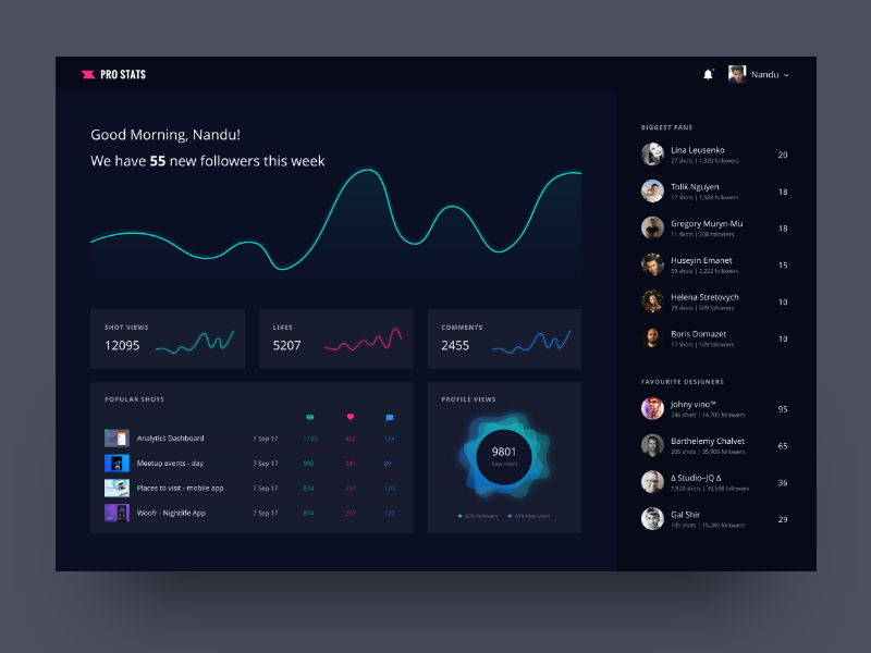 Pro Stats Dashboard – Dribbble