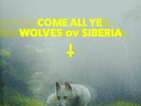 Wolves ov Siberia
