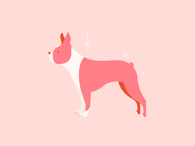 Vectober 25 // Buddy pink vectober mid century inktober feminine texture vintage illustration dog boston terrier