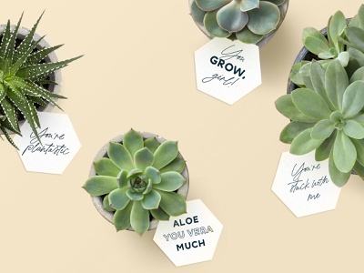 Printable Succulent Gift Tags gift tag plant activity printable succulent