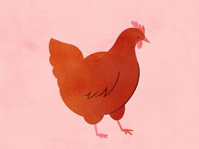Vectober 24 - Bird hand drawn pencil animal farm paint procreate chicken inktober feminine texture vintage illustration