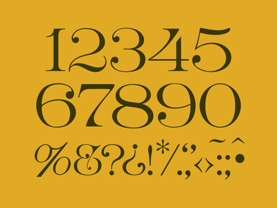 Bronwyn Numerals typeface font specimen special characters ampersand numbers numerals design typography lettering