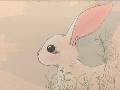 bunny sketch rabbit bunny nature pencil sketch