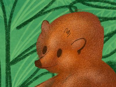 Fuzzy Little Bear bear