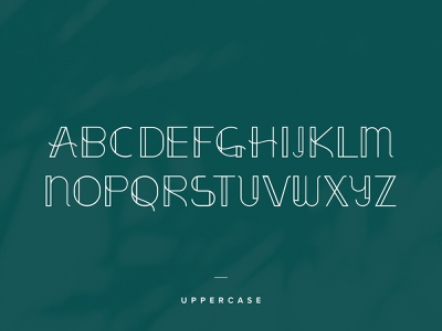 Elegantor Font elegant elegant font vintage fonts vintage font type type design typeface designer font font design typeface design logo type