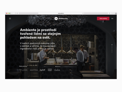 Ambiente – website update