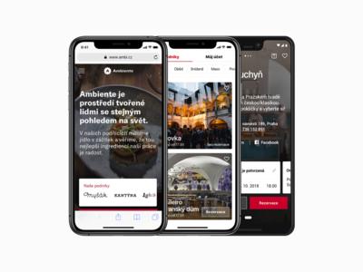 Ambiente – app and mobile comparison