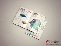 Infography report
