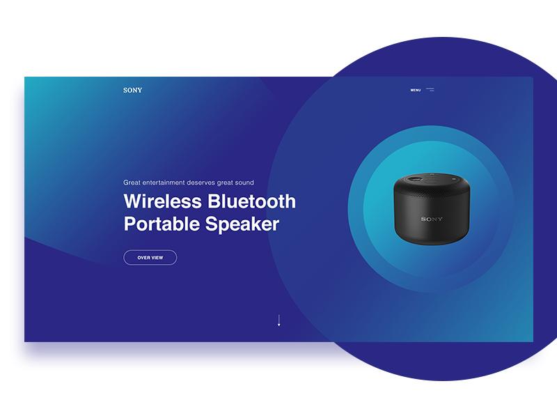 Sony Wireless Bluetooth Speaker