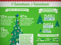 Xmas Infografik2