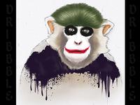 Joker Monkey