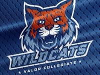 Valor Collegiate Academies